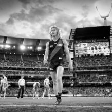 AFL 2017 Round 01 - Photographers Choice