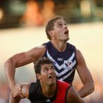 Aaron Sandilands, Essendon, Fremantle, Patrick Ryder