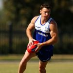 Brent Harvey, North Melbourne