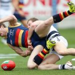 Adelaide Crows, Geelong Cats, Patrick Dangerfield, Steve Johnson
