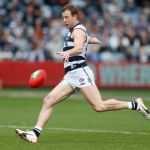 Geelong Cats, Steve Johnson