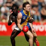 Anthony McDonald-Tipungwuti, Cameron Lockwood, Essendon, Williamstown