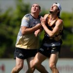 David Neitz, Hawthorn, Marc Pittonet