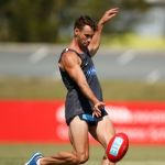 Andrew Walker, Carlton