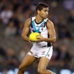 Jake Neade, Port Adelaide