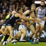 Carlton, Ed Curnow, Geelong Cats, Joel Selwood