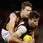 Craig Bird, Essendon, Hawthorn, Liam Shiels