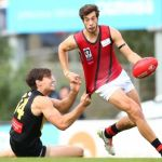 Essendon, Joel Tippett, Kyle Langford, Werribee