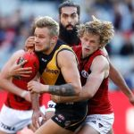 Brandon Ellis, Essendon, Richmond, Will Hams