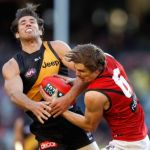 Alex Rance, Essendon, Joe Daniher, Richmond