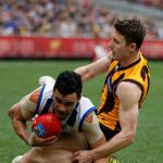 Hawthorn, Liam Shiels, Lindsay Thomas, North Melbourne
