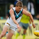Luke Reynolds, Port Adelaide