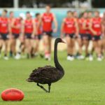 AFL 2016 Training - Sydney Swans 080317
