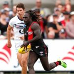 Andrew Mackie, Anthony McDonald-Tipungwuti, Essendon, Geelong Cats
