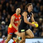 Carlton, Tom Williamson
