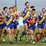 VFL 2017 Round 02 - Williamstown v Casey
