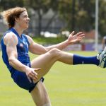 Ben Brown, North Melbourne