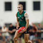 David Zaharakis, Essendon