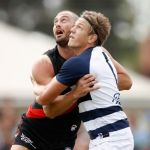 Essendon, Geelong Cats, Rhys Stanley, Tom Bellchambers
