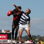 Anthony McDonald-Tipungwuti, Essendon, Geelong Cats, Tom Stewart