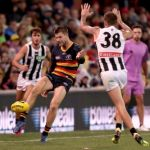 Adelaide Crows, Bryce Gibbs, Collingwood, Jeremy Howe