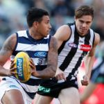 Geelong Cats, Tim Kelly