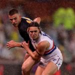 Adelaide Crows, Lukas Webb, Paul Seedsman, Western Bulldogs