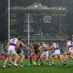 Adelaide Crows, Cameron Ellis-Yolmen, Ed Richards, Western Bulldogs