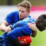 Jack Ziebell, Majak Daw, North Melbourne