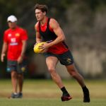 David Swallow, Gold Coast Suns