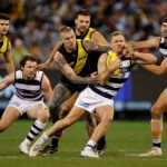 Dustin Martin, Geelong Cats, Joel Selwood, Patrick Dangerfield, Richmond, Ryan Abbott, Toby Nankervis, Trent Cotchin