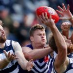 Geelong Cats, Lachie Henderson