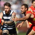 Geelong Cats, Gold Coast Suns, Jarrod Witts, Zach Tuohy