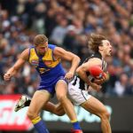 Chris Mayne, Collingwood, Nathan Vardy, West Coast Eagles