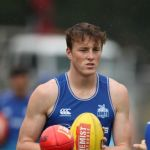 Nick Larkey, North Melbourne