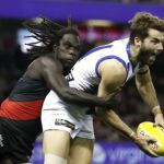Anthony McDonald-Tipungwuti, Luke McDonald
