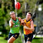 Alex Witherden, Cam Rayner