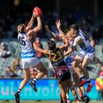 Mark Blicavs, Mark O�Connor, Shane McAdam, Tom Stewart