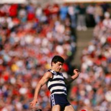 AFL 1990's - Geelong Cats