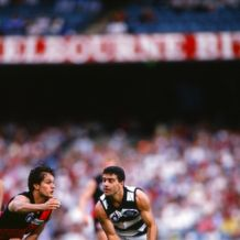 AFL 1993 Round 6 - Essendon v Geelong
