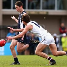 2016 TAC Cup Rd 12 - Geelong Falcons v Sandringham Dragons