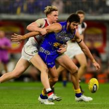 AFL 2018 Round 11 - West Coast v St Kilda