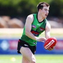 AFL 2018 Training - Essendon 191118